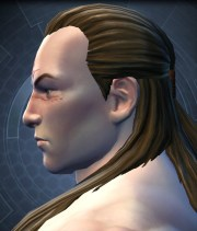 swtor character customization