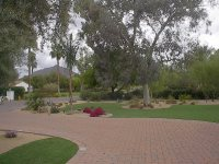 Phoenix, Arizona Artificial Grass - Landscaping , Backyard ...