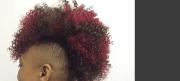 xclusive hair salon