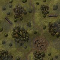 roll20 forest graves encounters marketplace grave tabletop ground d20 25x25