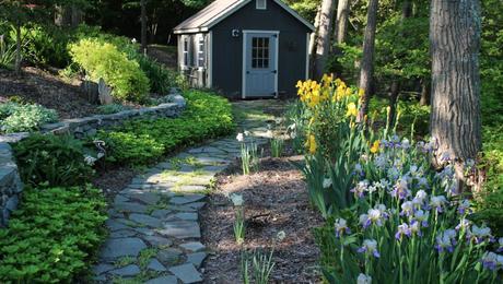 avis s maryland garden in spring