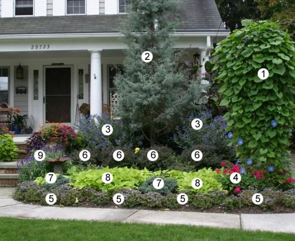 designing with annuals - finegardening