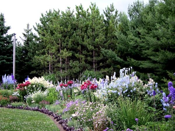Perennial Garden Designs Zone 5