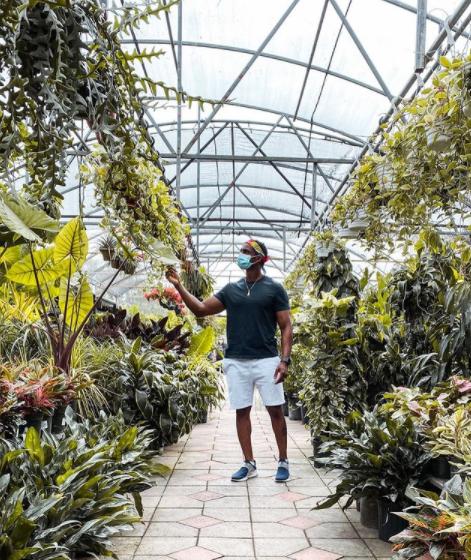 एक नर्सरी में आदमी पौधों की जाँच करता है