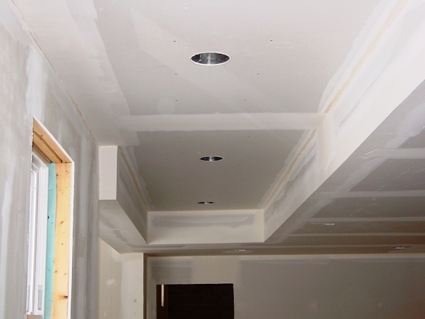 Basement ceilings: drywall or a drop ceiling?