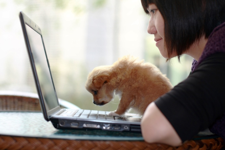 10 WorkfromHome Jobs for Dog Lovers  FlexJobs