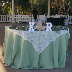 chair cover rentals macon ga wicker chairs new zealand top linen near me with free quotes gigsalad lady decor and more linens covers in el cajon
