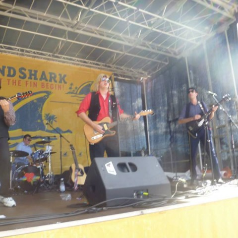 Hire The Petty Hearts Tribute Band In Palm Bay Florida
