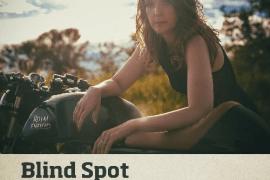 Andrea Nixon - Blind Spot