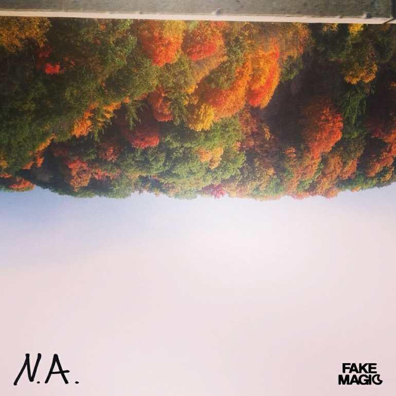 Fake Magic - N.A.