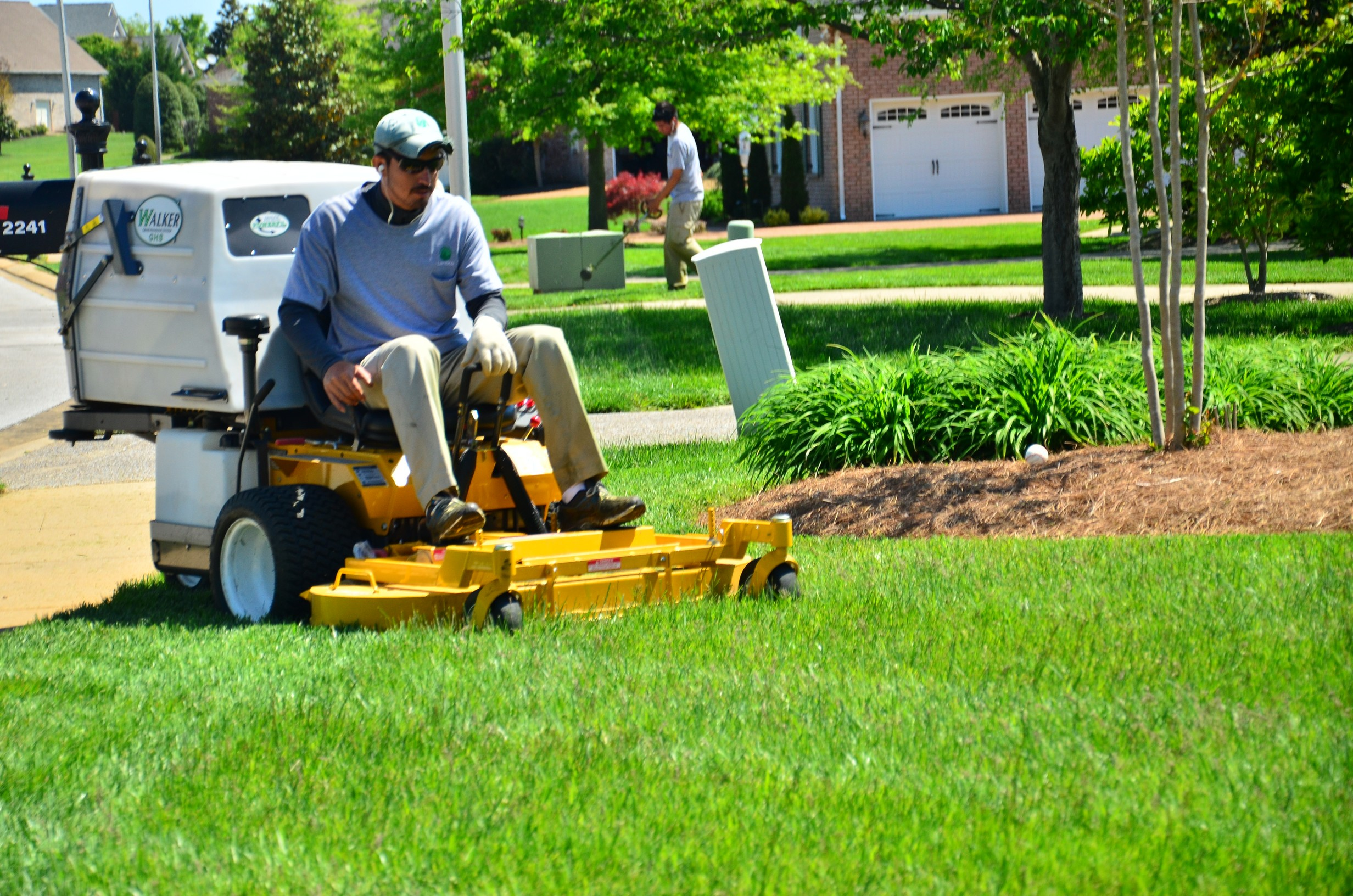 find lawn care