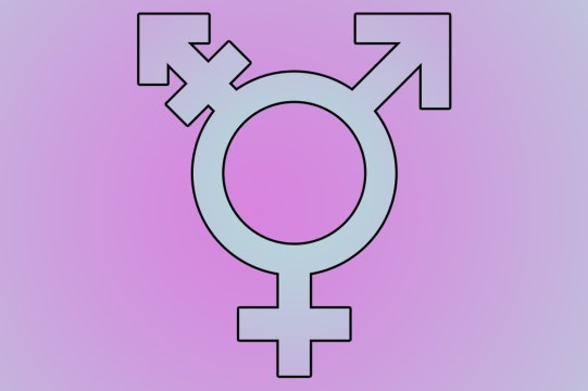 A Policy Assessment Of Transgender Rights