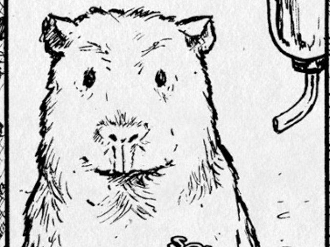 Hobart :: Worms & Guinea Pigs