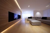 22 Living Rooms With Light Wood Floors (PICTURES)