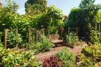 Backyard Vegetable Gardens 24 Fantastic Backyard Vegetable