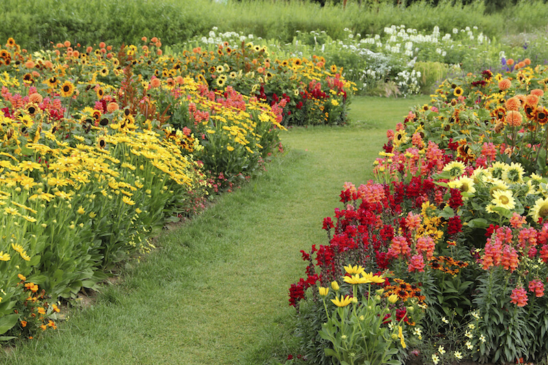 47 Gorgeous Perennial Garden Ideas Home Stratosphere