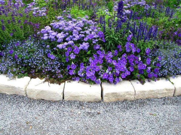 gorgeous perennial garden ideas