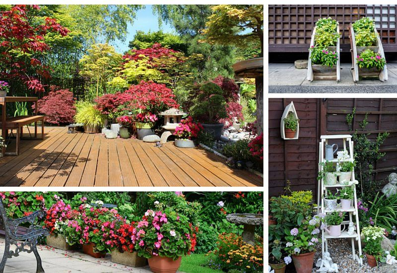 35 Patio Potted Plant and Flower Ideas (Creative and