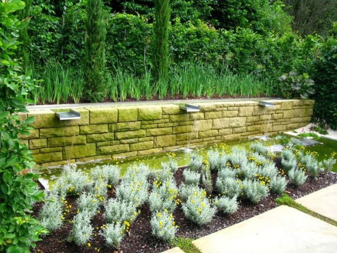 Cornering the large rectangular pavers are small shrubs with yellow blossoms planted in rows.