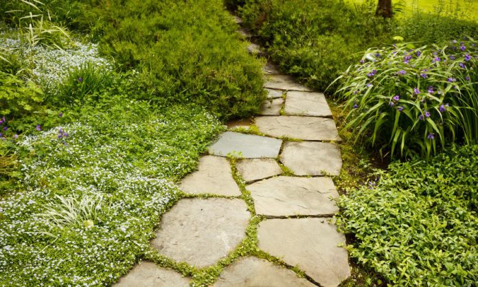 These flagstone's gaps are filled in with grasses entering thick bushes.