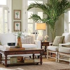 Color For Living Rooms To Go Room Table Best Colors 2019 Give Your A Touch Of Earthen With This Scheme Featuring Familiar