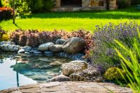 35 Backyard Pond Images (GREAT Landscaping Ideas)