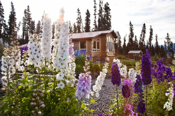 Image result for ultima thule lodge