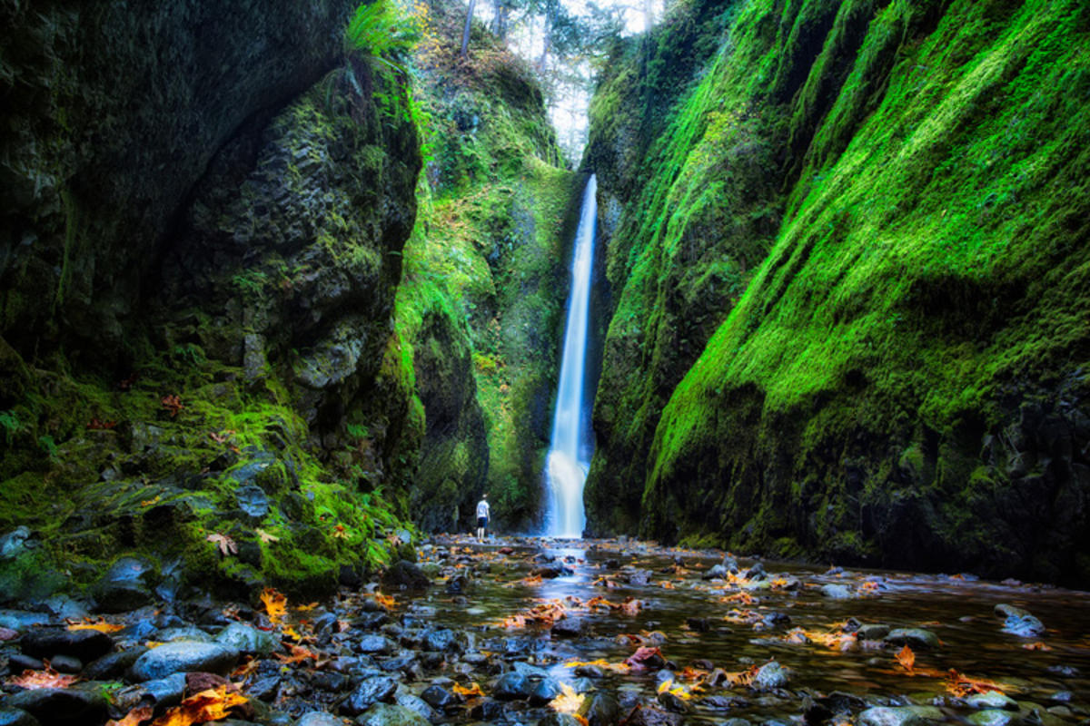 Multnomah Falls Oregon Wallpaper This Incredible Gorge Should Be On Top Of Your Bucket List