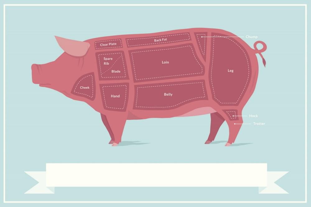 medium resolution of cuts of pork butcher shop diagram poster 18x12 inch