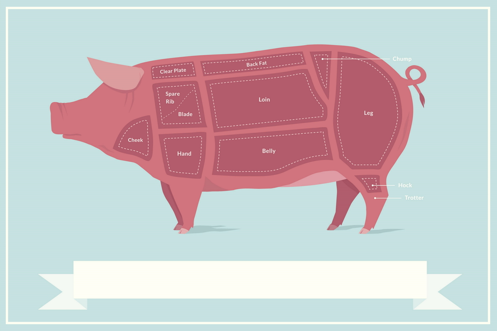 hight resolution of cuts of pork butcher shop diagram poster 18x12 inch