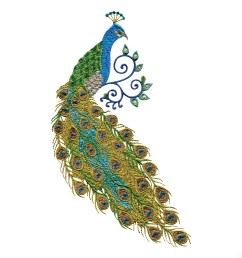 peacock clipart free [ 3600 x 3600 Pixel ]