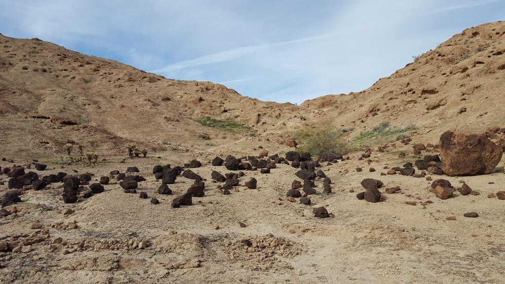 Horse Tanks