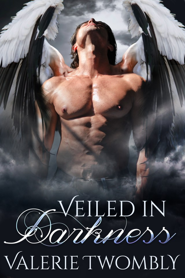Veiled In Darkness - Paperback, signed 0000003