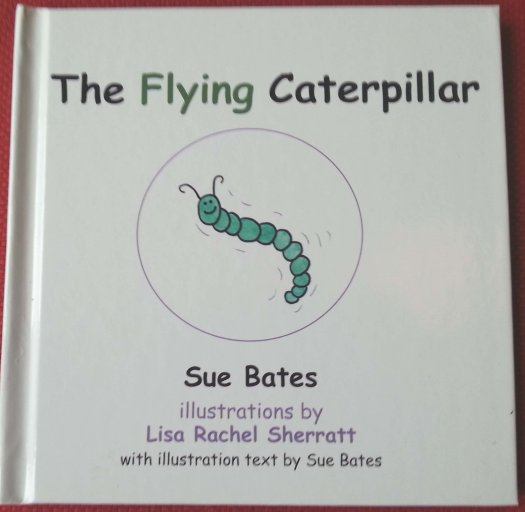 The Flying Caterpillar 00004