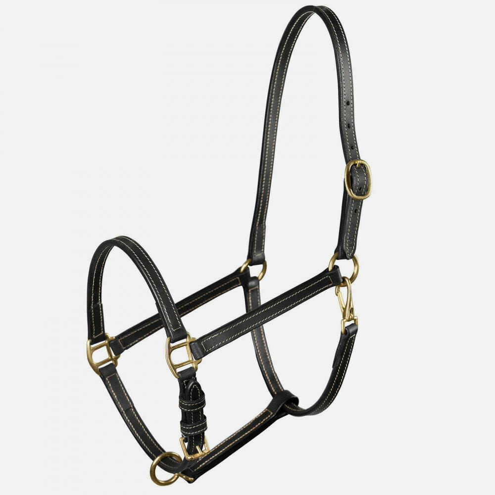 Leather Stable Halter – Pony Size