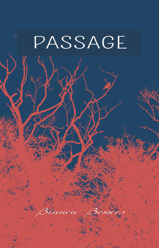 PASSAGE (Signed by the Author) 00001