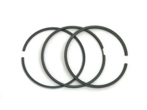 55566* Briggs World Formula-Animal Piston Ring Set