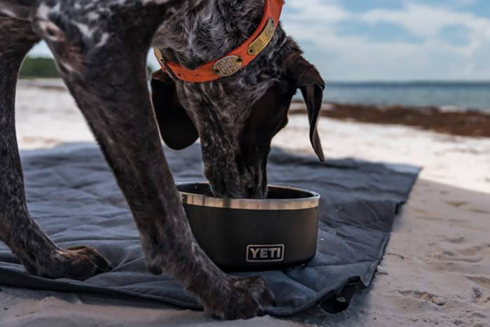double camp chair home goods cushions new yeti: daypack, dog bowl, blanket, and more | gearjunkie