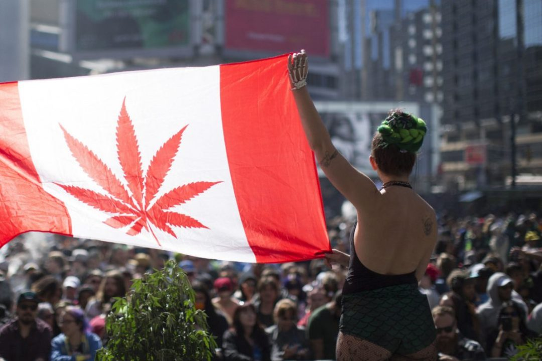 The Legalization of Marijuana in Canada