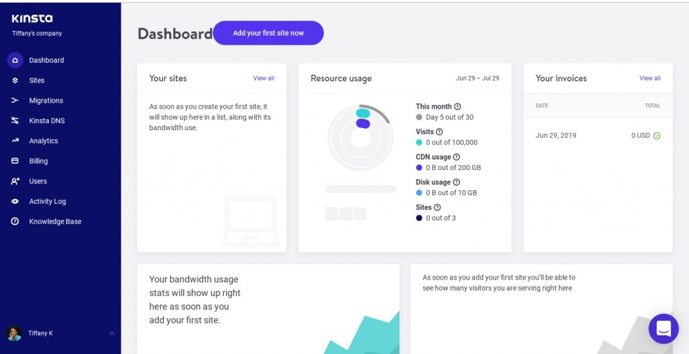 The Kinsta Dashboard Customers See When Logged On