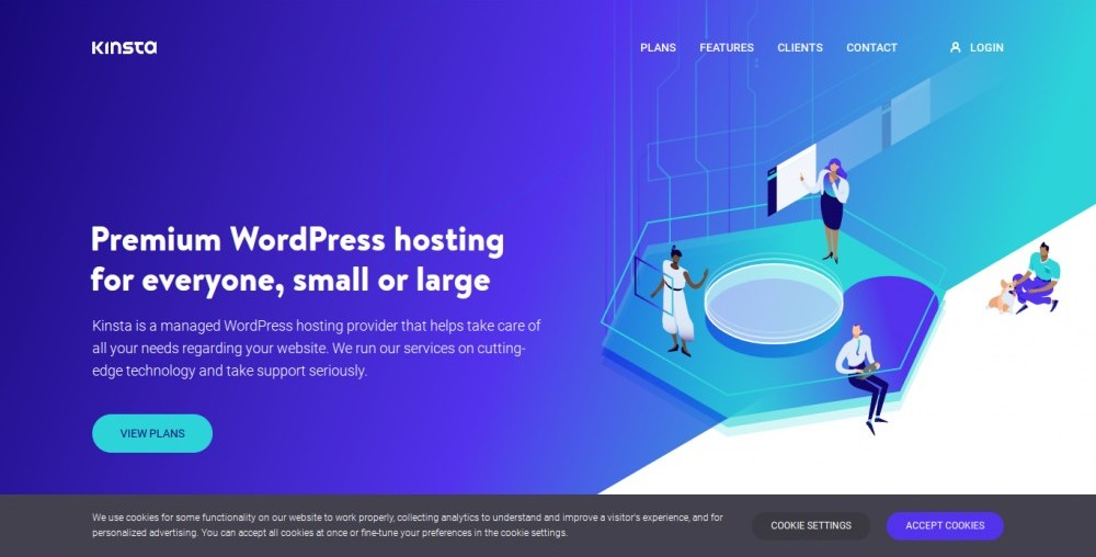 the kinsta homepage