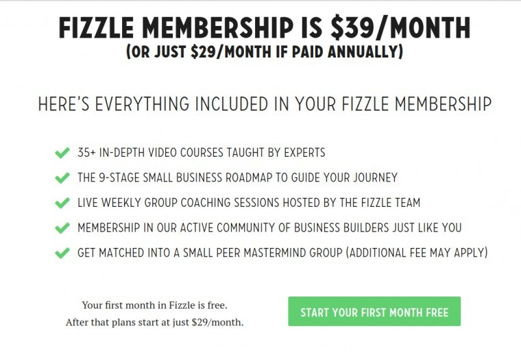 what is fizzle.co about
