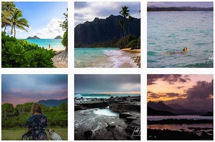 hawaii wonder