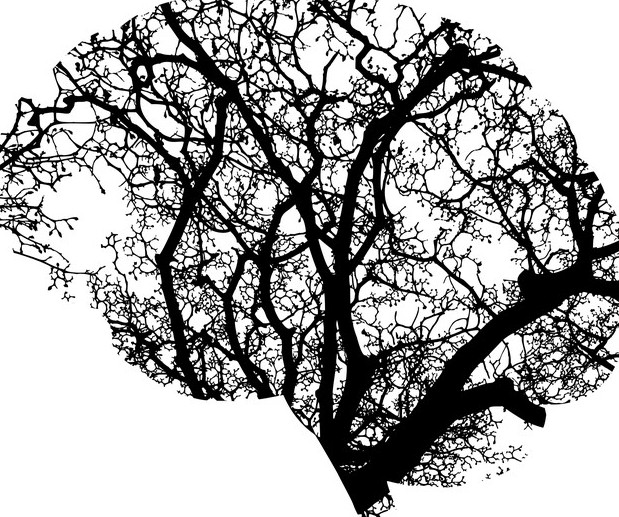 The neural love of trees