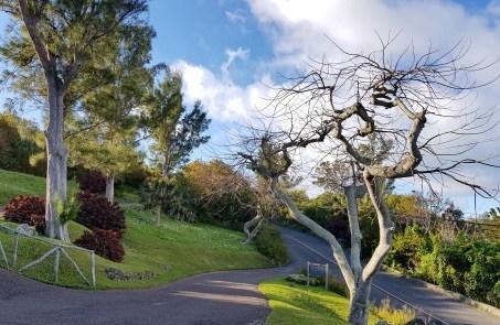 Fort Scaur Hill Park