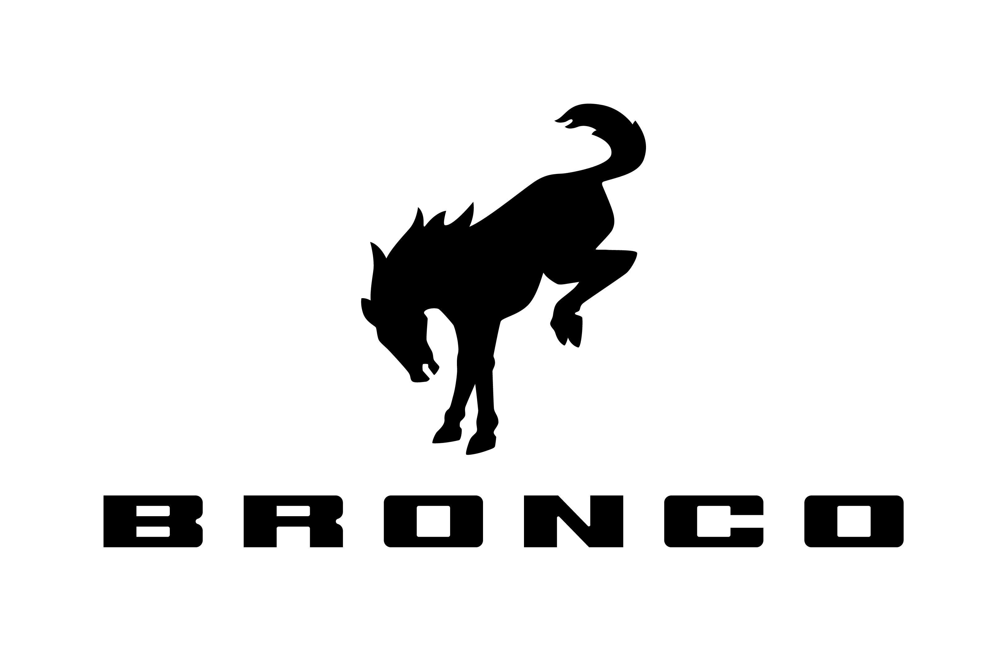 Ca R Horse