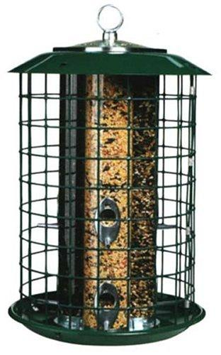 Cage Bird Feeder Collection  Easy Returns  Backyard Chirper