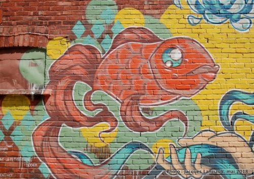 Souris-moi, petit poisson, MC Baldassari, Montréal, Québec