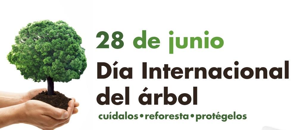 Resultado de imagen de día internacional del árbol