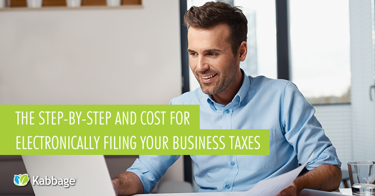The Step-by-Step Guide and Cost for Electronically Filing Your Business Taxes